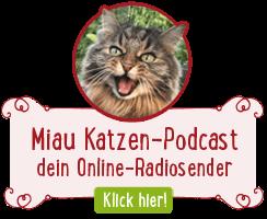 Klick hier zum Katzen-Podcast