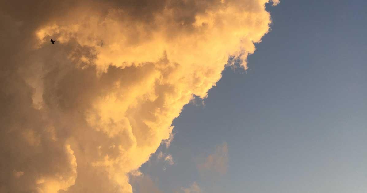 Solch ein Himmel ist einfach traumhaft - auch für eine alte Katze.