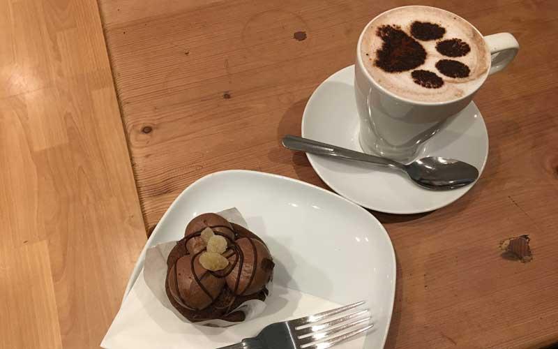 Kulinarisches und Kaffee im Katzencafé Edinburgh