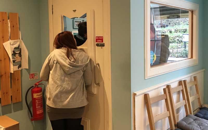 Der Eingangsbereich im Katzencafé Edinburgh / Maison du Moggy