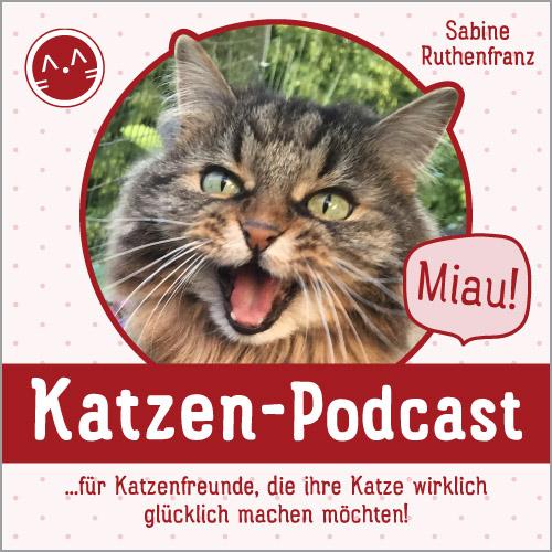 Katzen-Podcast