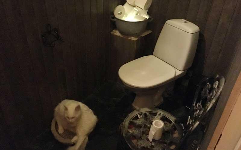 Das stille Örtchen für Menschen inkl. Kuschelplatz für die Katz' ;-)