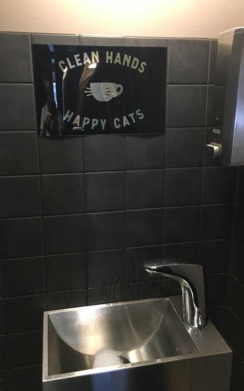 Hände waschen ist Pflicht im Katzencafé Stockholm / Java Whiskers