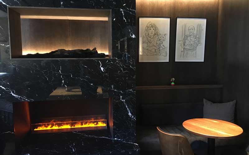 Stimmungsvolles, edles Ambiente im Katzencafé Java Whiskers Stockholm