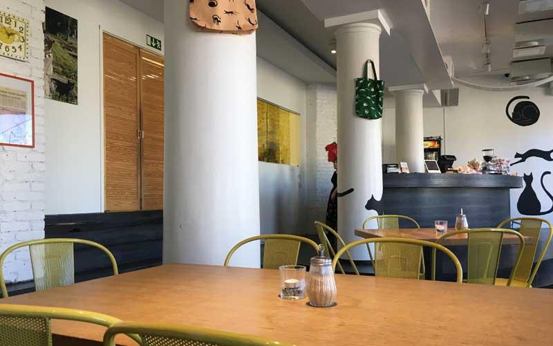 Blick vom Eingang aus auf die Theke das Katzencafés