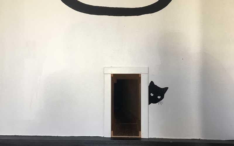 Hier geht's zum Rückzugsraum für die Katzen