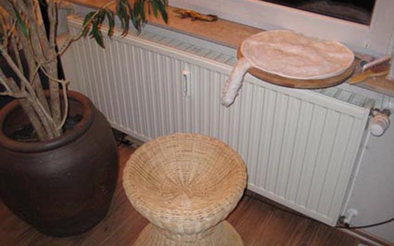 Trudis Fenster-Sitzbrett