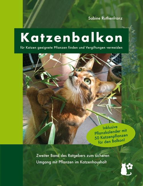 Katzenbalkon – für Katzen geeignete Pflanzen finden und Vergiftungen vermeiden