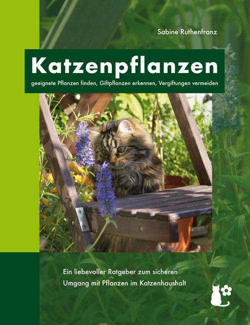 Katzenpflanzen – geeignete Pflanzen finden, Giftpflanzen erkennen, Vergiftungen vermeiden