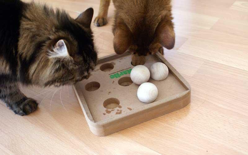Katzenspielzeug - Kitty Brain Train Boccia Game