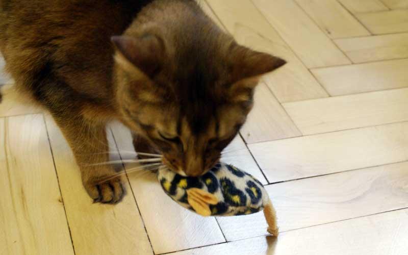 Katzenspielzeug - Minzemaus
