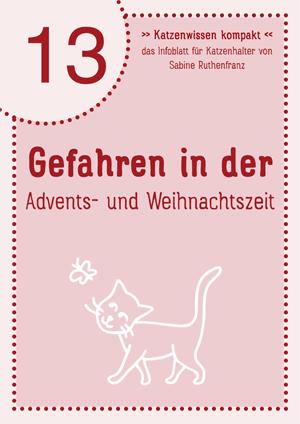 Katzenwissen-kompakt 09 Ausgehverbot