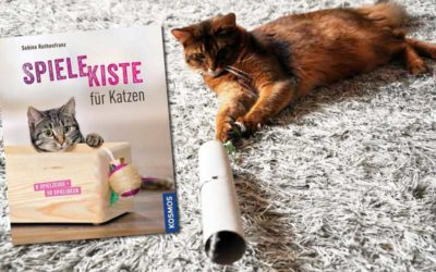 Spielekiste für Katzen