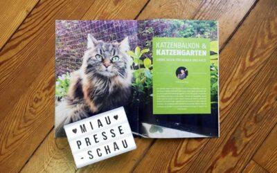 Grüne Oasen für Mensch und Katze